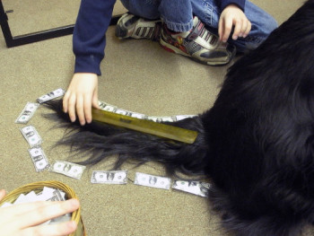 Children measuring a dog's tail.